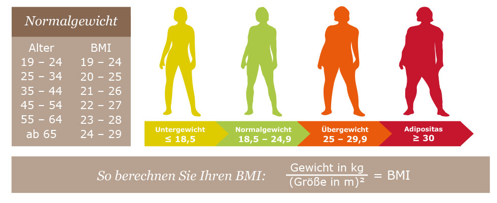 Body-Mass-Index - BMI